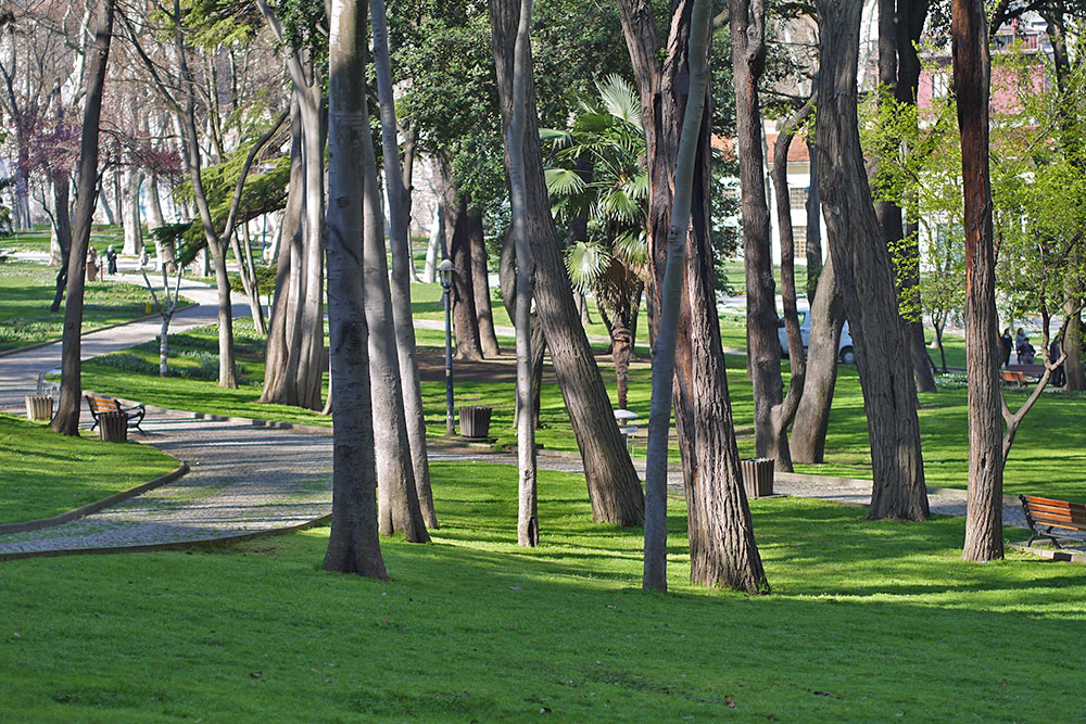 Парк Гюльхане - тенистые аллеи