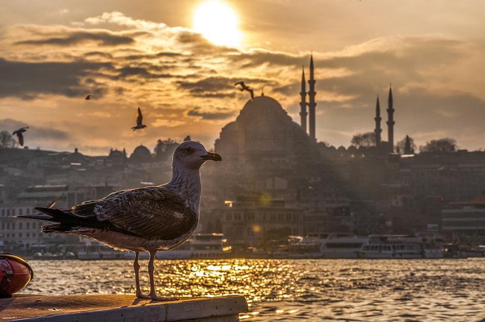 Стамбул, мечеть