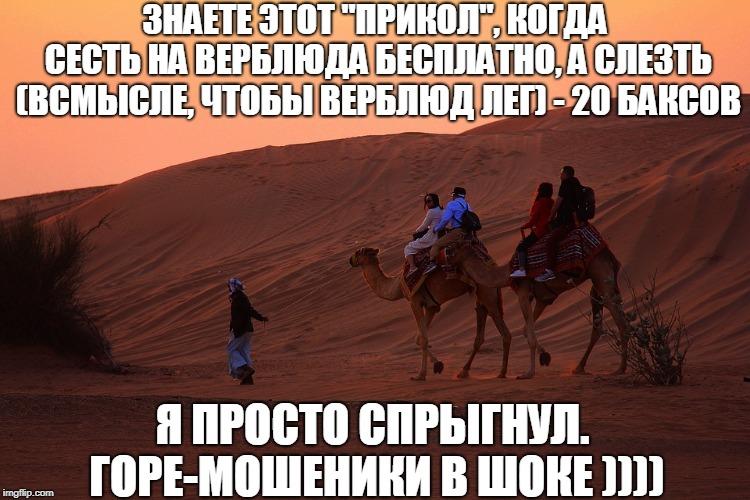 Мем про катание на верблюде