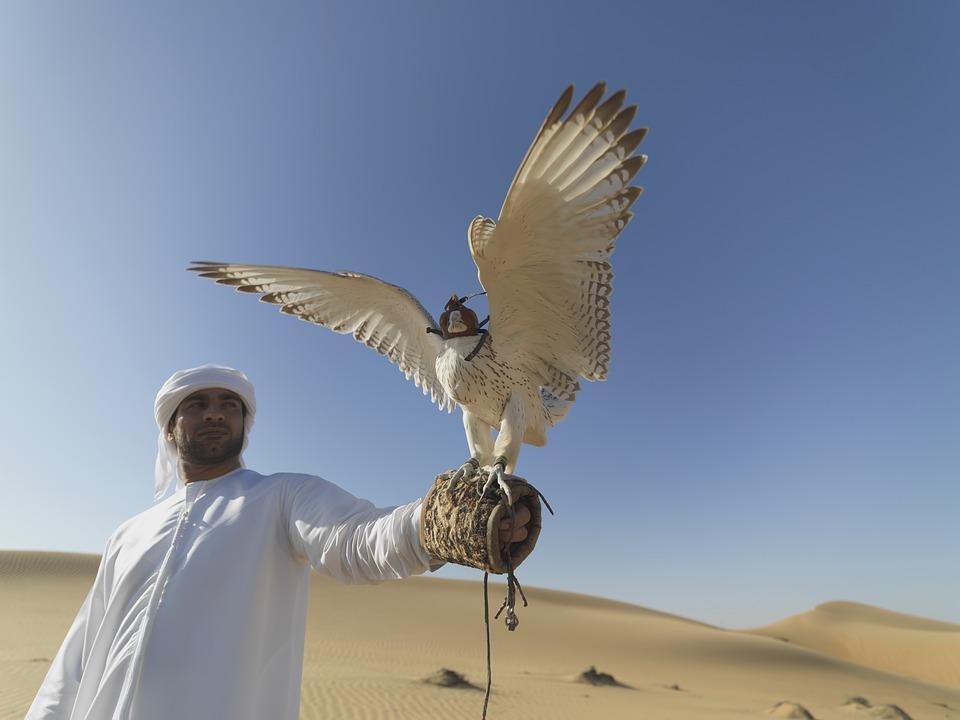 Араб с соколом