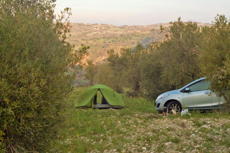 Наша стоянка в оливковой роще