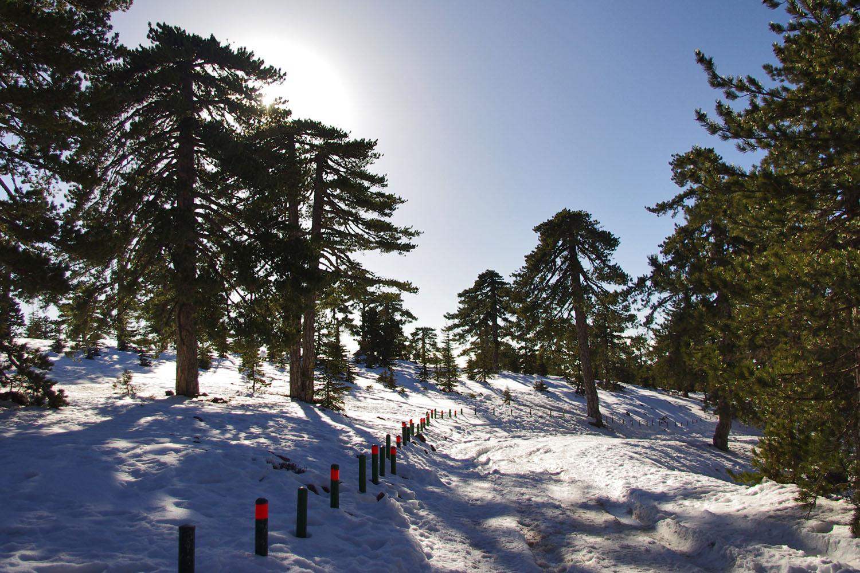 На Тродосе снег