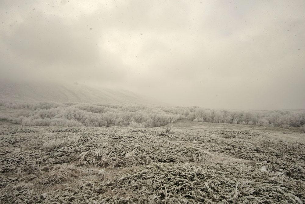 Верхнее плато Чатырдага в тумане