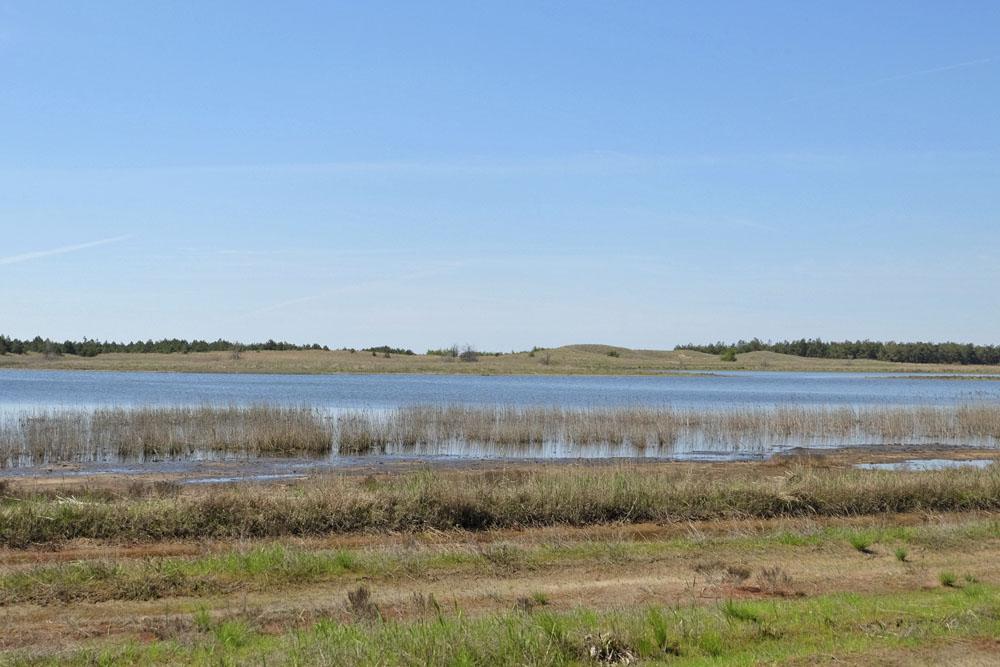 озера Кинбурнской косы