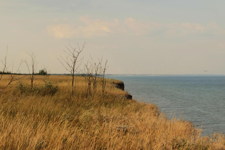 Приазовье -обрывы вдоль моря